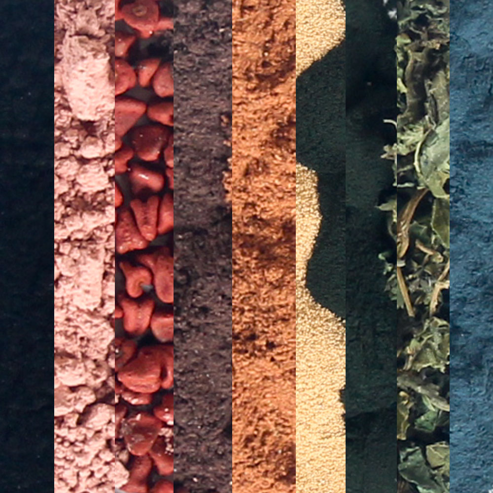 Natural Colorants Sampler Pack