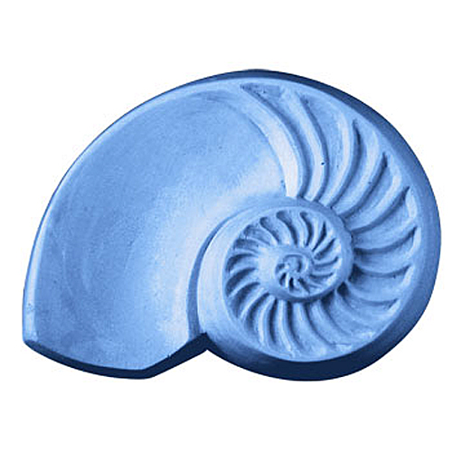 Chambered Nautilus Mold