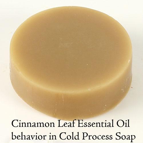 Cinnamon Leaf Essential Oil Bramble Berry 174 Soap Making Supplies
