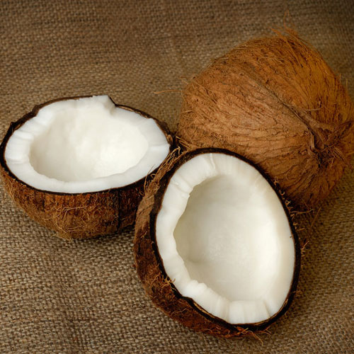 Coconut Cybilla Fragrance Oil