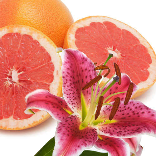 Grapefruit Lily Fragrance Oil