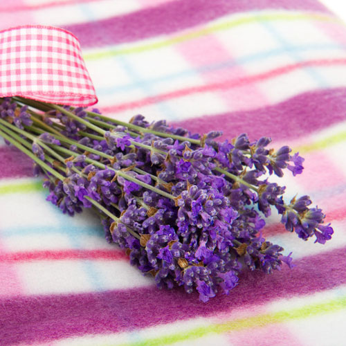 Lavender Bouquet Cybilla Fragrance Oil