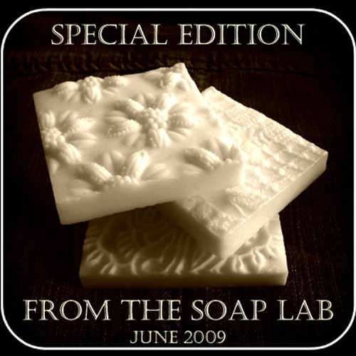 Let&#39;s Get Soapy E-Zine, Soap Lab Special
