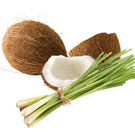 Coconut Lemongrass FO