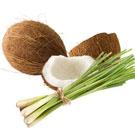 Coconut Lemongrass FO