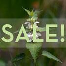 Sale on Nettle Extract!