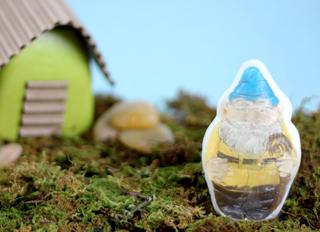Gnome Soap