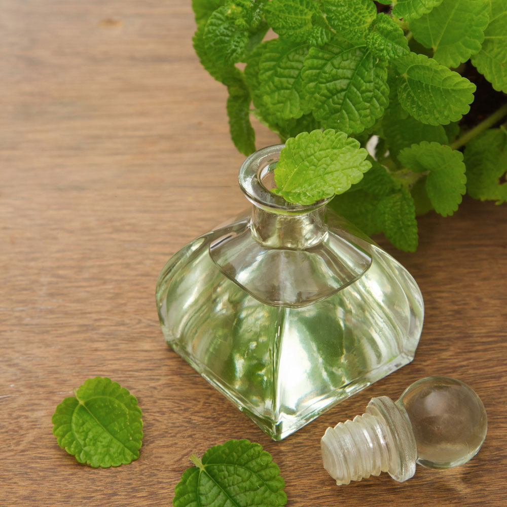 Peppermint Essential Oil, 1st Distill