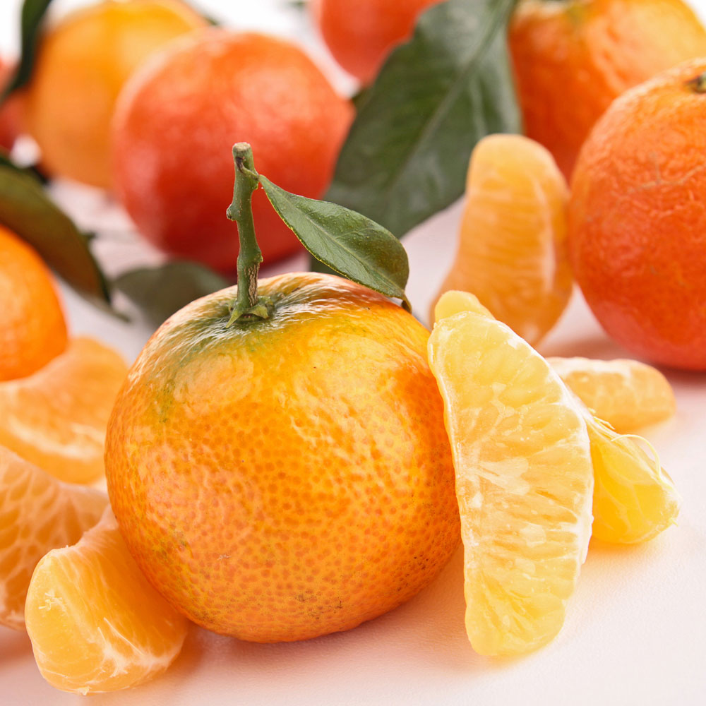 Tangerine Surplus Fragrance Oil