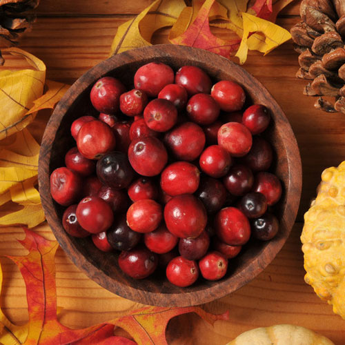 Cranberry Chutney Fragrance Oil (3.5 oz)