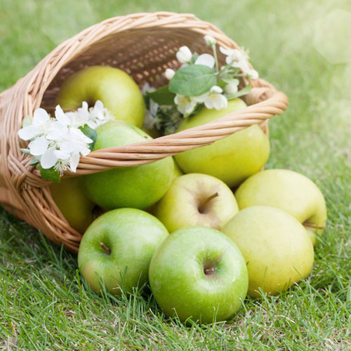 DISCONTINUED - Tart Apple Fragrance Oil