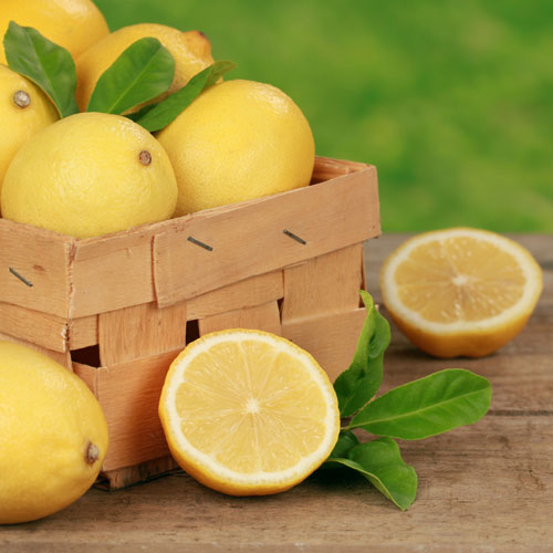 Sweet Meyer Lemon Fragrance Oil