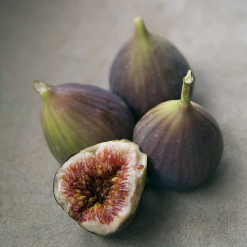 Moroccan Fig Fragrance Oil