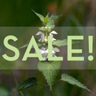 Sale on Nettle Extract!